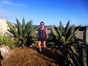 Giant aloe vera plants! (Not really)